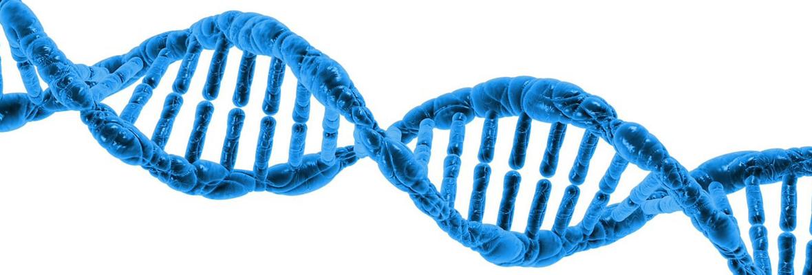 遺伝子診断外来